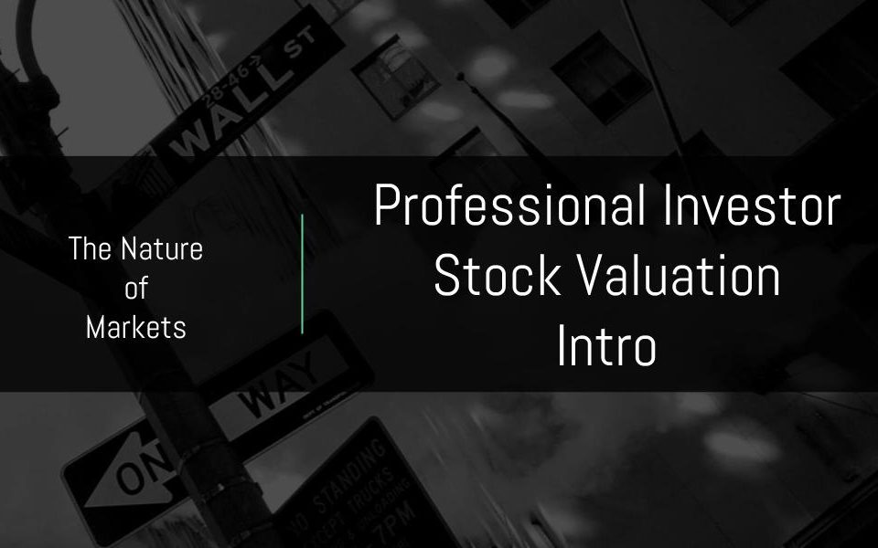 Professional Stock Valuation Course intro